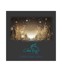 cullen-bay-christmas